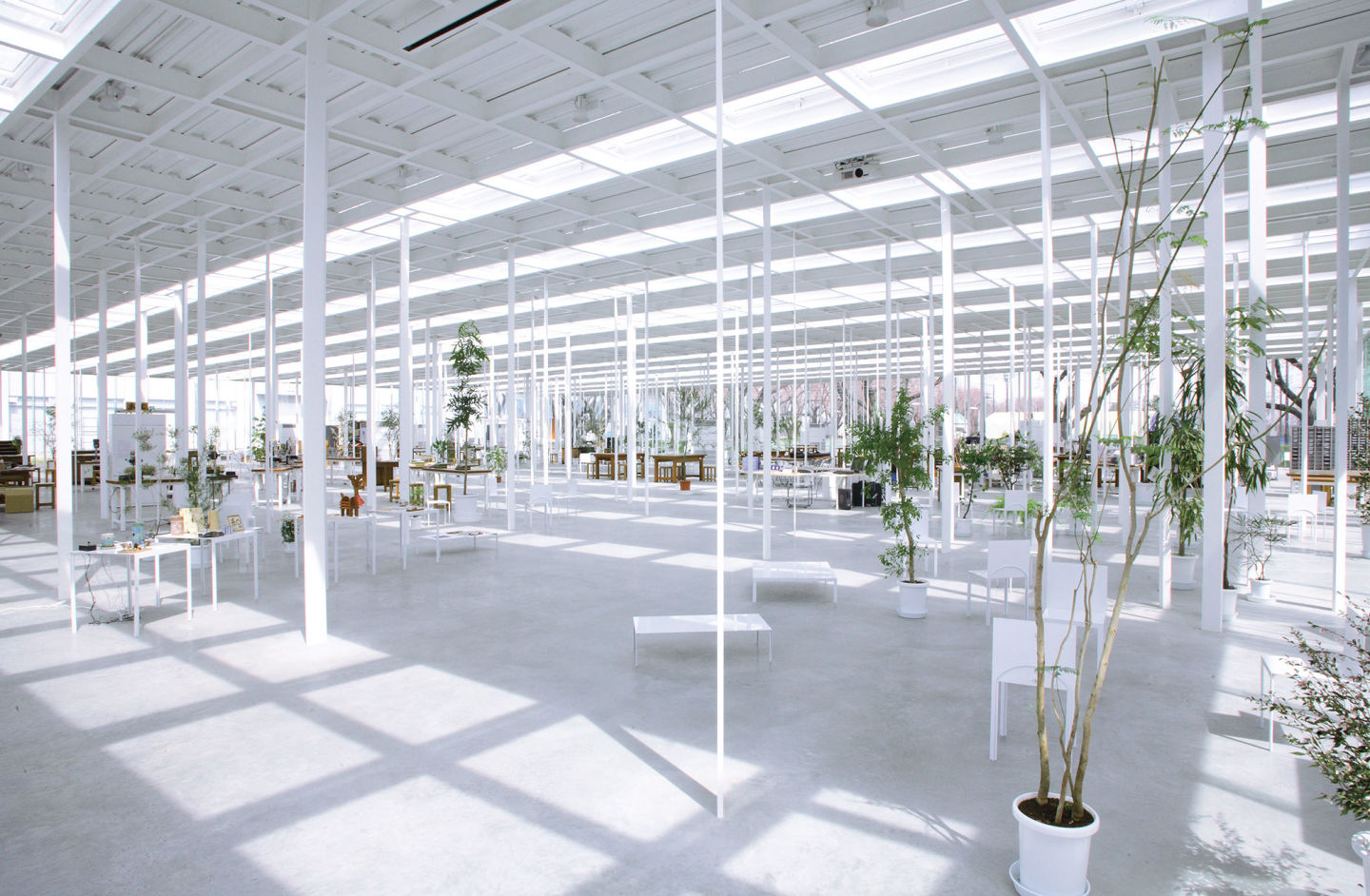 Kanagawa Institute of Technology / Junya Ishigami + Associates